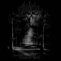Druid (IRL) - Wisdom Dark