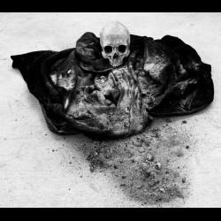 Dumuzi - Salute the Ashes