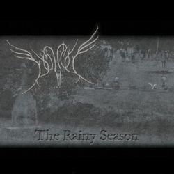 Dunnock - The Rainy Season