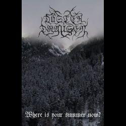 Düsterdraußen - Where Is Your Summer Now?