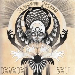 Reviews for DxVxDxD SxLF - Scorpio Rising