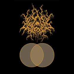 Review for Ecferus - The Tourniquet Hemisphere