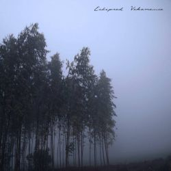 Reviews for Eclipsed Vehemence - Harbinger of Handcuffs