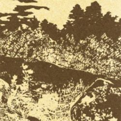 Reviews for E.D.I.E.H. - Cosmogaia