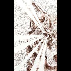 Emanations - Omnia Ex Interiore Incipiunt
