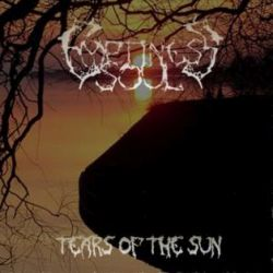 Review for Emptiness Soul - Tears of the Sun
