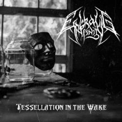 Review for Engraving Infinity - Tessellation in the Wake
