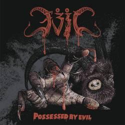 Review for Evil (JPN) - Possessed by Evil