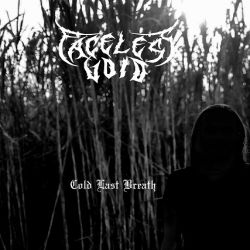 Faceless Void - Cold Last Breath
