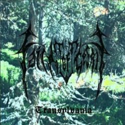Faith of Gestalgt - Transylvania