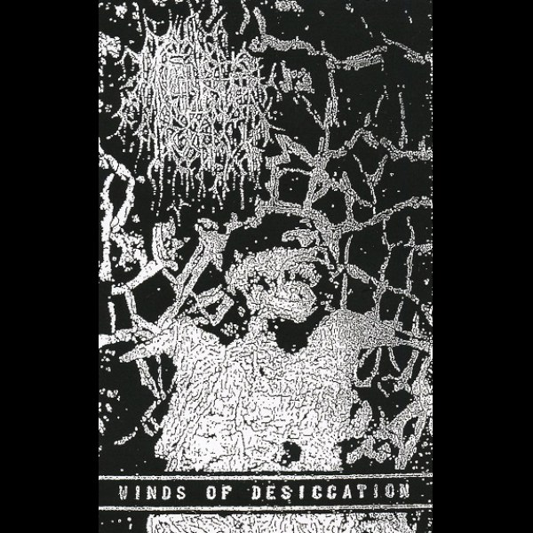 Feeble Rot - Winds of Desiccation