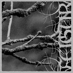 Review for Feigur - II: Desolation