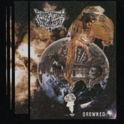 Review for Fermenting Innards - Drowned
