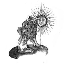 Fierce - Reabsorption