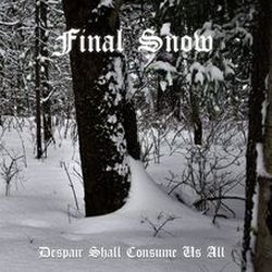 Final Snow - Despair Shall Consume Us All