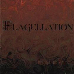 Flagellation - Behind the Veil
