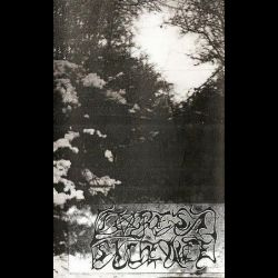 Review for Forest Silence - The Third Winter