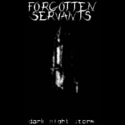 Reviews for Forgotten Servants - Dark Night Storm
