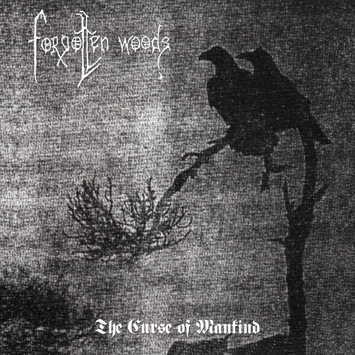 Review for Forgotten Woods - The Curse of Mankind