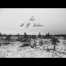 Review for Für - NY Sadness