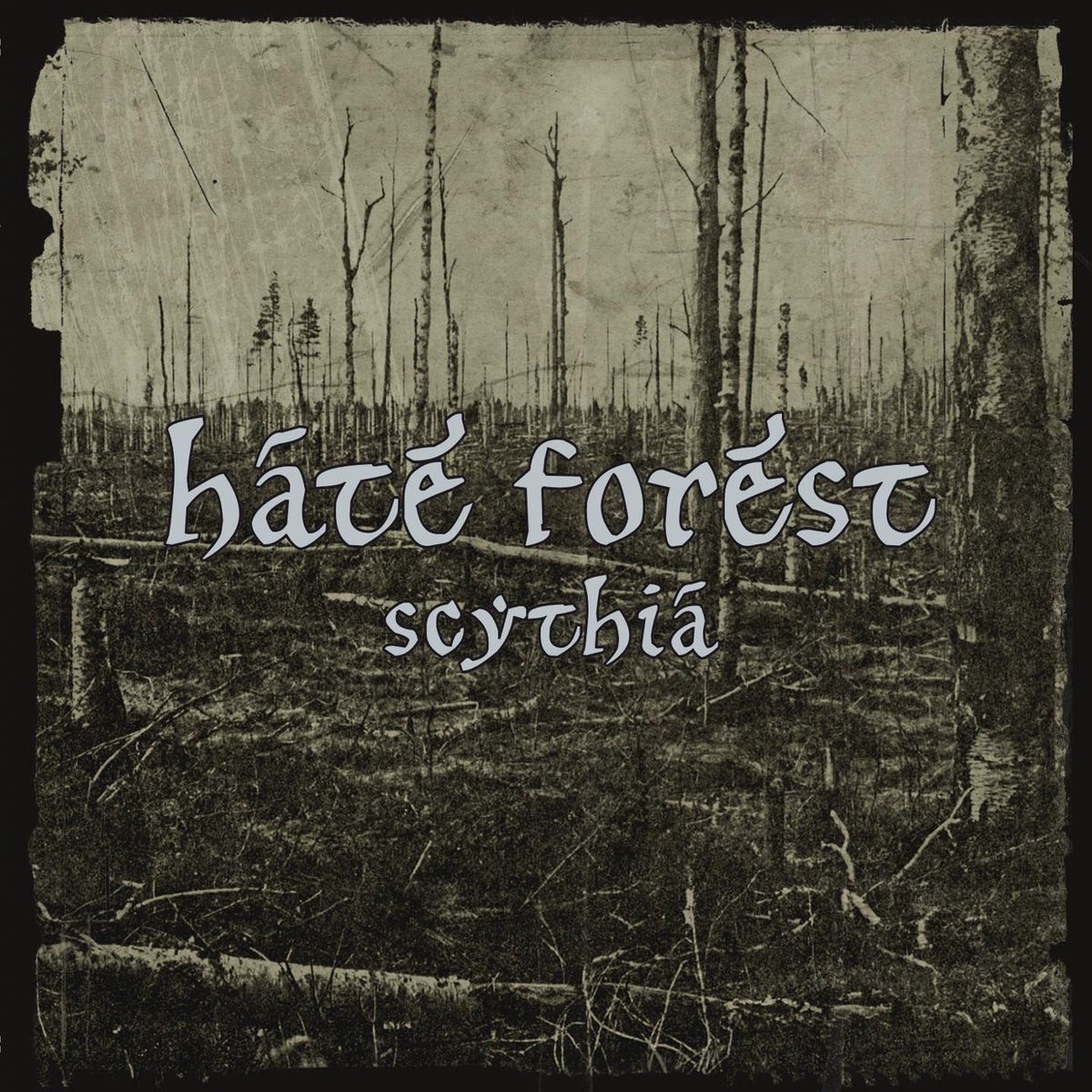 Review for Hate Forest - Scythia