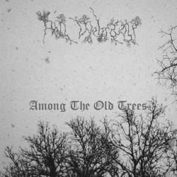 Hell Wehrwolf - Among the Old Trees