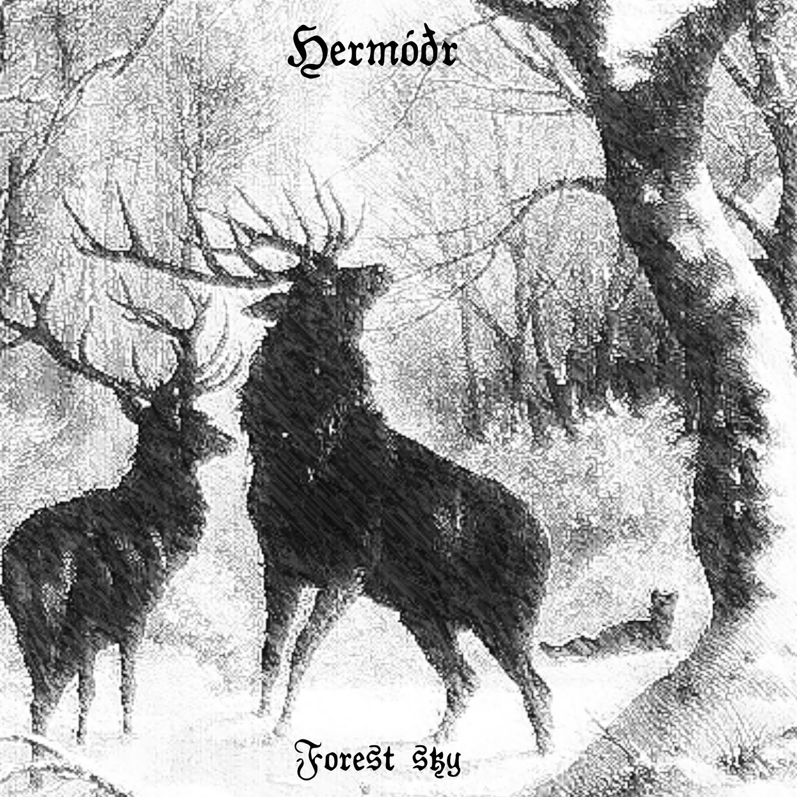 Reviews for Hermóðr - Forest Sky