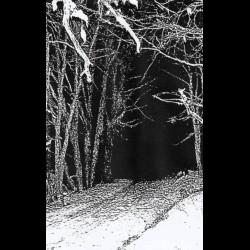 Howling Nightwinds - Demo I