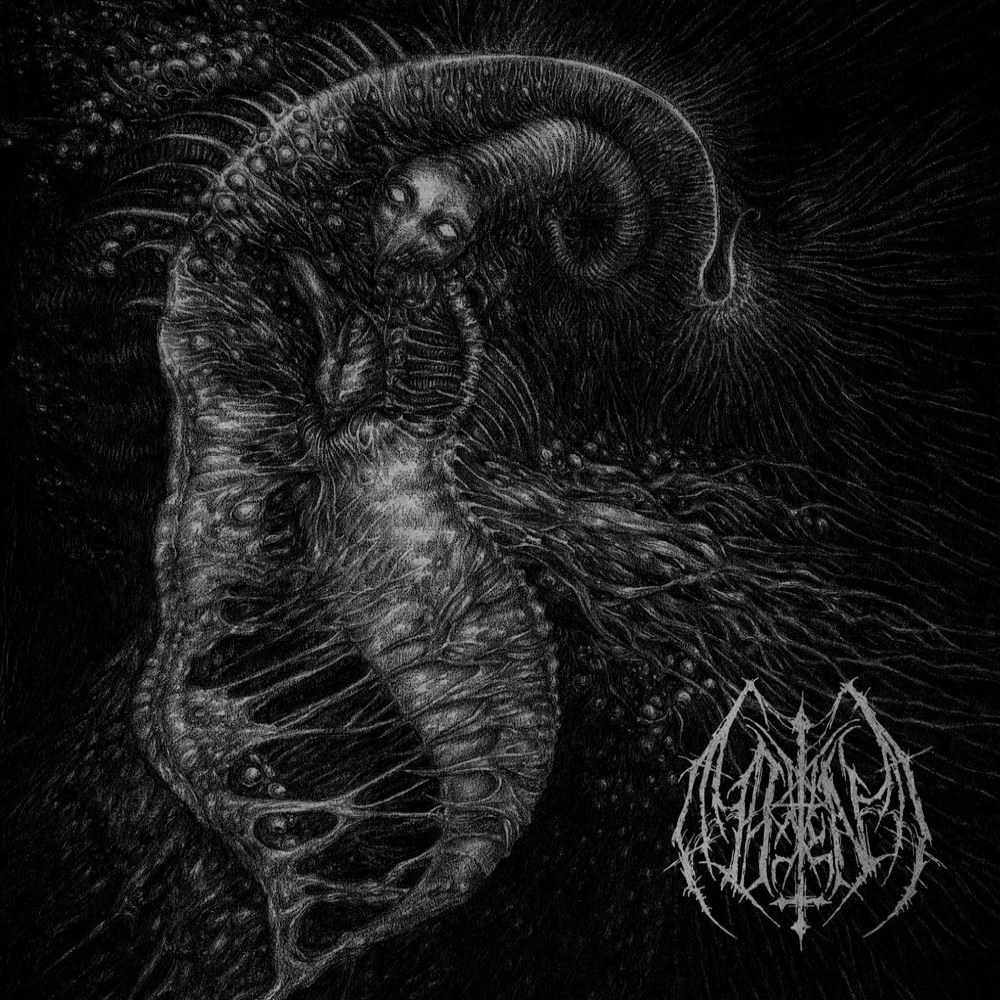 Review for Ill Omen - Divinity Through Un-creation