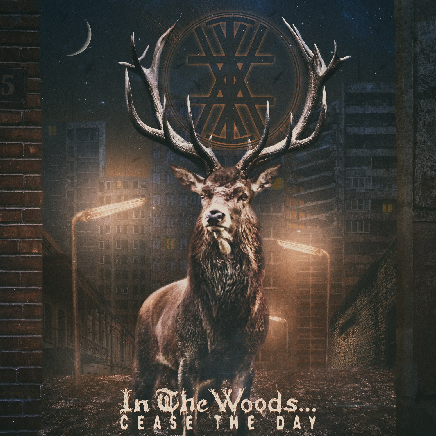 Review for In the Woods... - Cease the Day