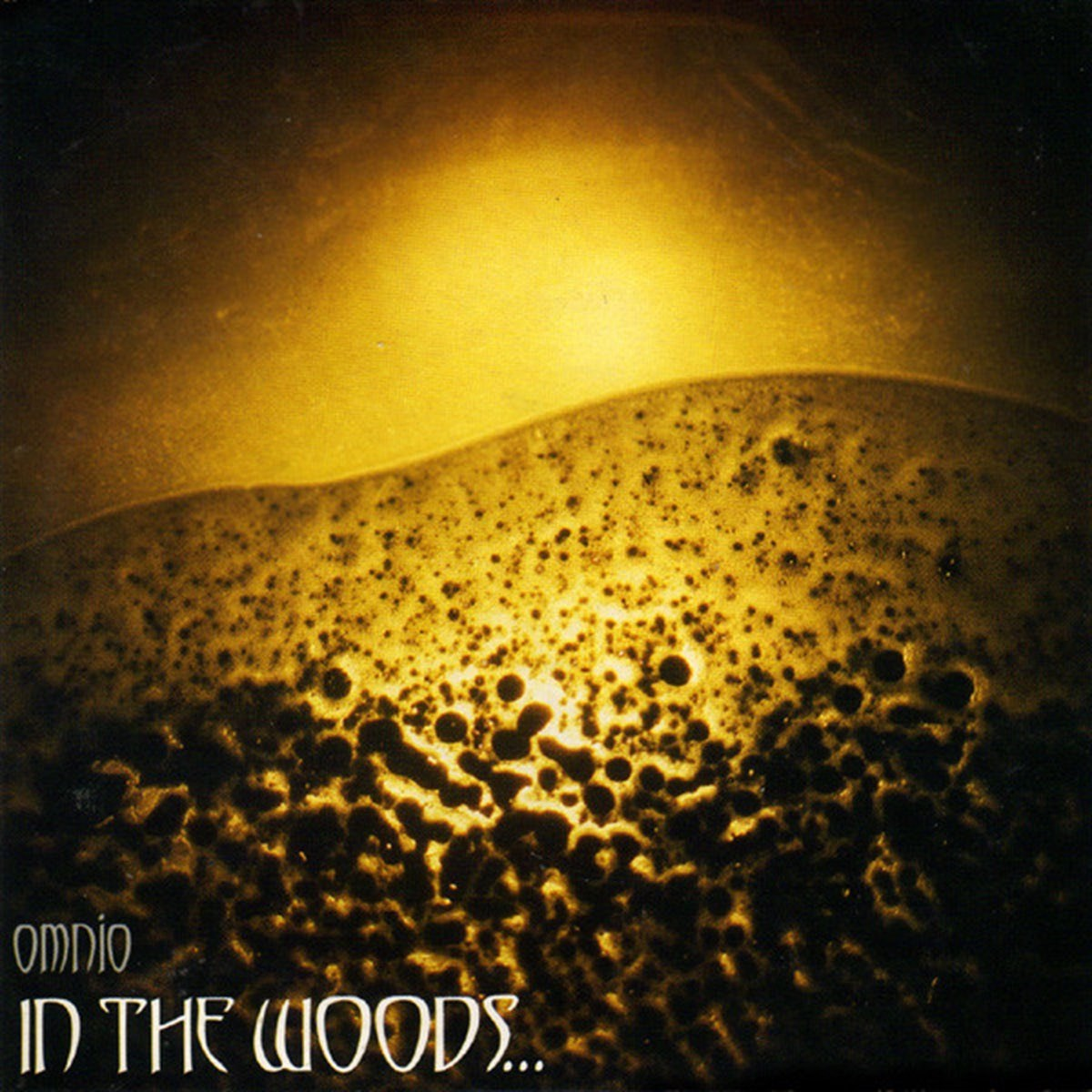 Review for In the Woods... - Omnio