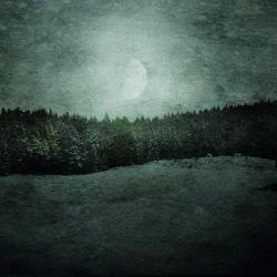 Irrbloss - Yggdrasil