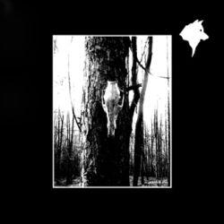 Korium - Súmračné prebúdzanie drevhov