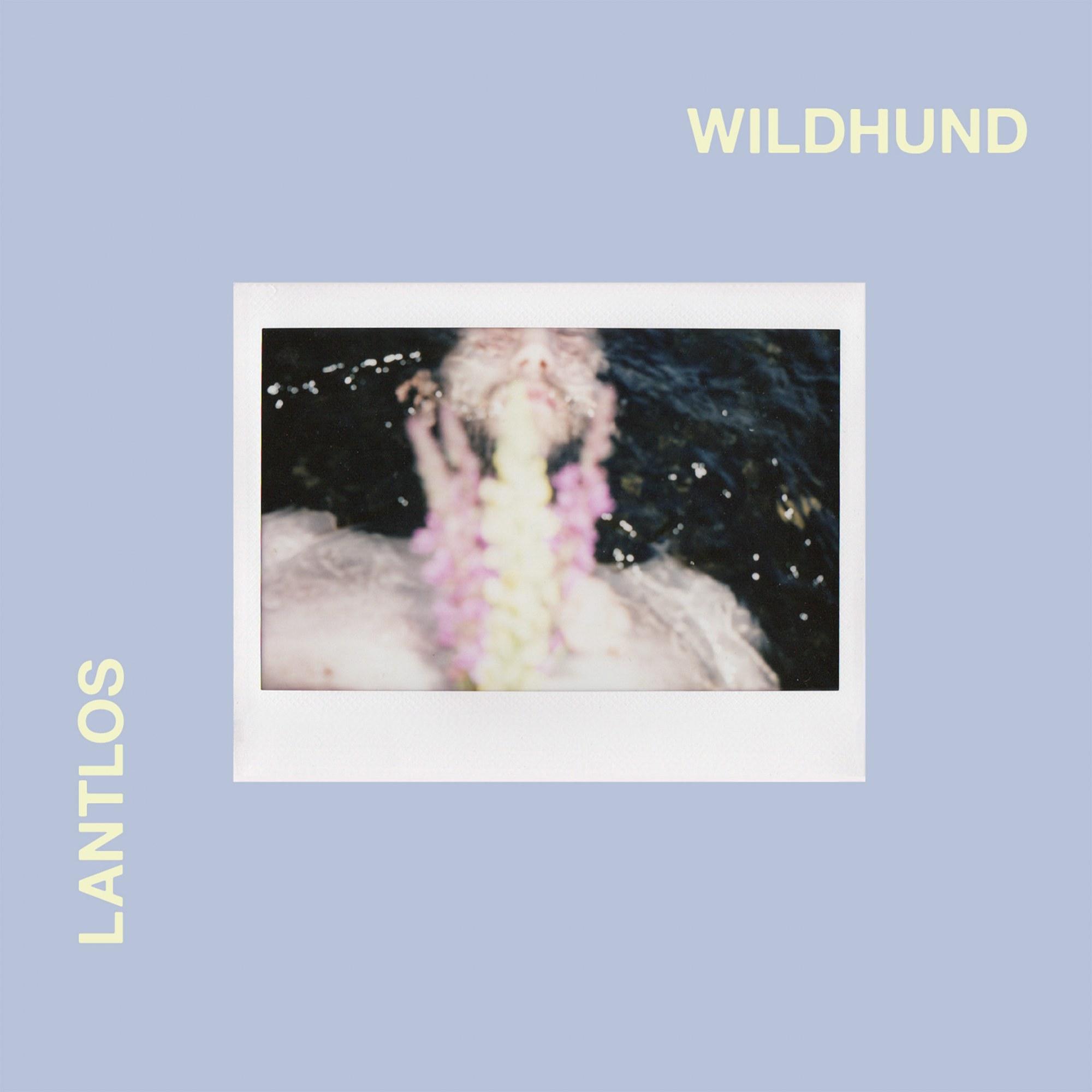 Lantlôs - Wildhund