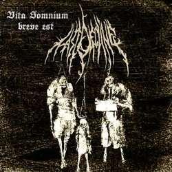 Review for Last Decline - Vita Somnium Breve Est