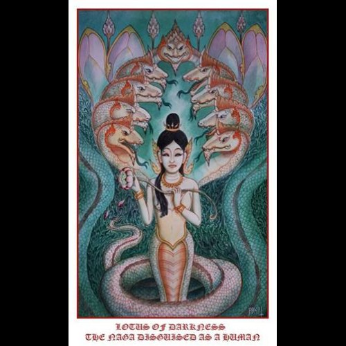 Review for Lotus of Darkness - The Naga Disguised as a Human