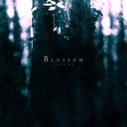Review for Lustre - Blossom