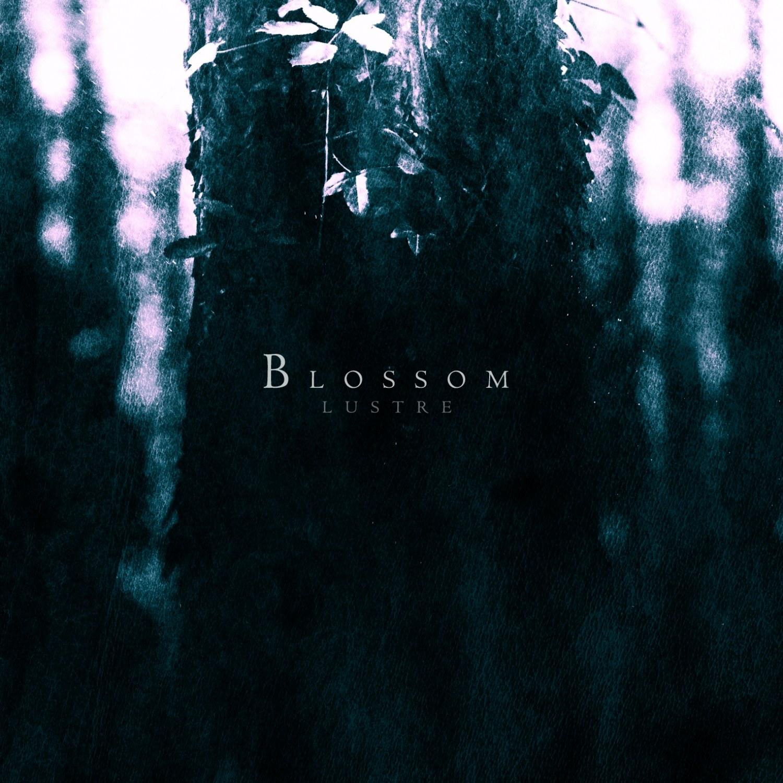 Review for Lustre (SWE) - Blossom
