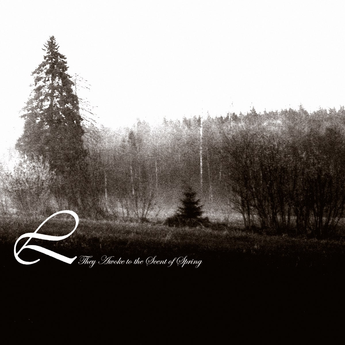Review for Lustre (SWE) - They Awoke to the Scent of Spring