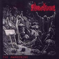 Review for Merciless - The Awakening