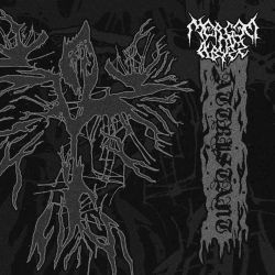 Review for Merged in Abyss - Attristant