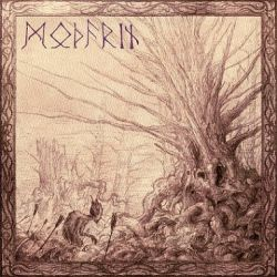 Modarin - In the Distance