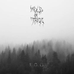 Review for Mold of Tree - Fog