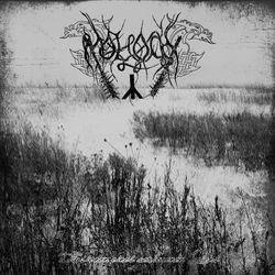 Review for Moloch (UKR) - Illusionen Eines Verlorenen Lebens
