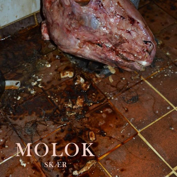 Reviews for Molok - Skær