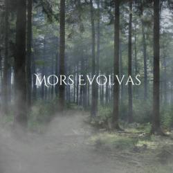 Mors Evolvas - The Pagan Woods