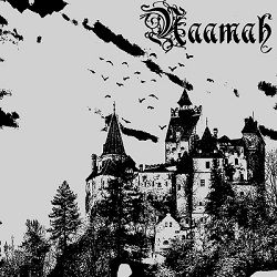 Review for Naamah - In the Shadow of the Nightfall