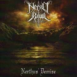 Reviews for Necro Ritual - Nerthus' Demise