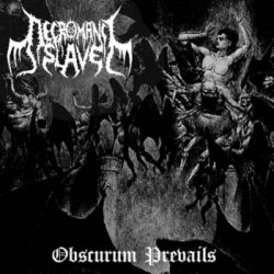 Review for Necromancy Slave - Obscurum Prevails