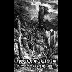 Reviews for Necrostrigis - Odwieczna Potęga Podziemi